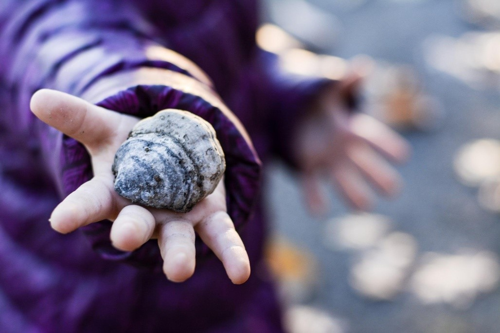 child holding a stone