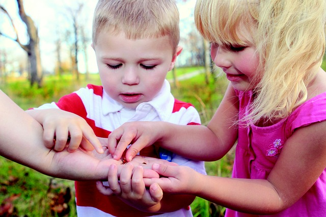 Children examining bugs in the garden