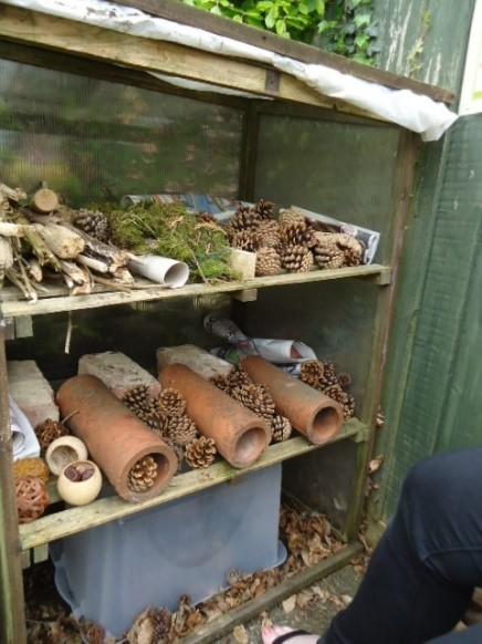 Bug hotel for national gardening week