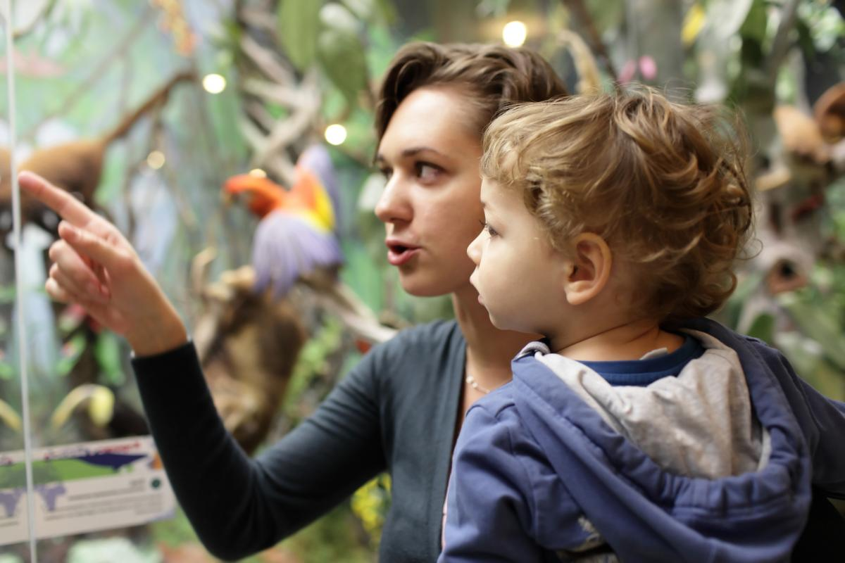 A woman and young boy examine an exhibit