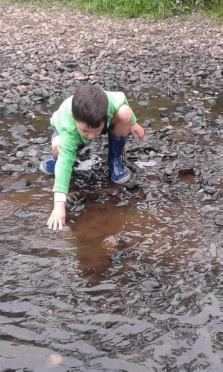 Boy aged 4 exploring the river