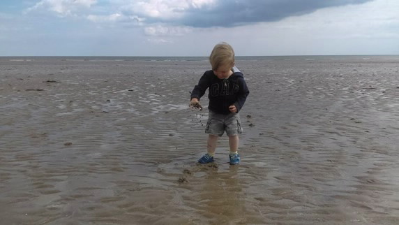 Boy, aged 2, explores wet sand