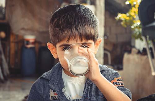 plant milk nurseries