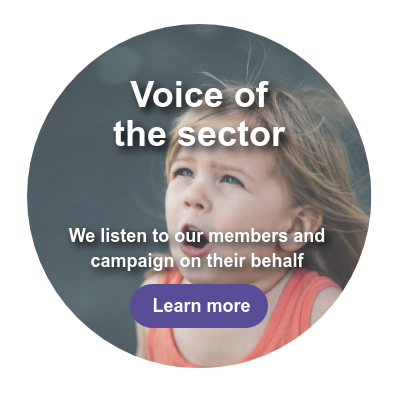 Voice of the sector